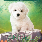 [PDF] [EPUB] Angel (The Puppy Place #46) Download