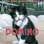 [PDF] [EPUB] Domino (Kitty Corner, #4) Download