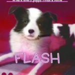 [PDF] [EPUB] Flash (The Puppy Place, #6) Download