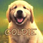 [PDF] [EPUB] Goldie (The Puppy Place, #1) Download
