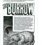[PDF] [EPUB] The Burrow Download