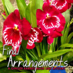 [PDF] [EPUB] Final Arrangements (A Ginger Barnes Mystery, #2) Download