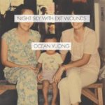 [PDF] [EPUB] Night Sky with Exit Wounds Download