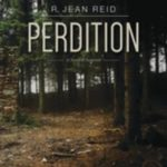 [PDF] [EPUB] Perdition: A Novel of Suspense Download