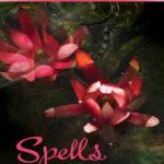 [PDF] [EPUB] Spells (Wings, #2) Download