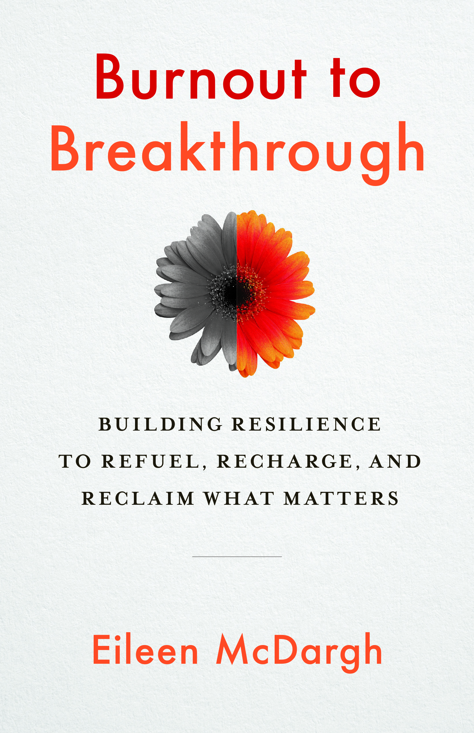 [PDF] [EPUB] Burnout to Breakthrough: Building Resilience to Refuel, Recharge, and Reclaim What Matters Download by Eileen McDargh