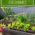 [PDF] [EPUB] Raised Bed Gardening for Dummies: A Beginner's Guide to Build a Raised Bed Garden No Matter Where You Live. Including Secrets for a Luxuriant Vertical, Hydroponics or Backyard Garden Download