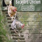 [PDF] [EPUB] Raising Backyard Chicken Handbook: The Complete Guide to Raising Chicken for Beginners: Chicken's Guide Download