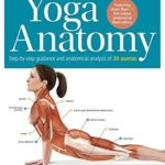 [PDF] [EPUB] The Student's Anatomy of Yoga Manual: 30 Essential Poses Analysed, Explained and Illustrated Download