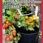 [PDF] [EPUB] Container Tomato Garden Guide For Beginners: Simple guides on how to plants and grow a healthy tomato Download